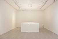 """""""Cosmology of Life"""" Installation View"""